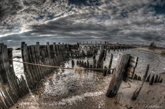 SandyHook32011-Pilings